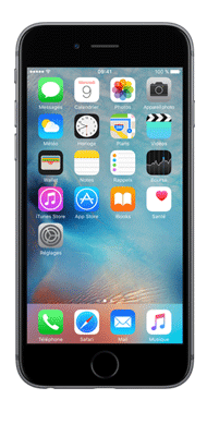 T�l�phone Apple iPhone 6s Plus Gris Sideral 16Go