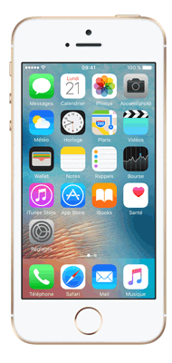 T�l�phone Apple iPhone SE Or 16Go