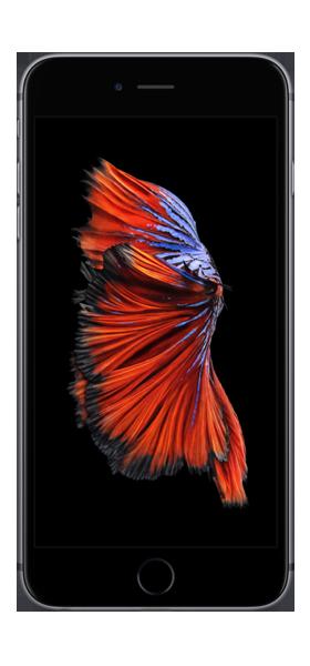 Téléphone Apple Apple iPhone 6s Plus Gris Sideral 32Go