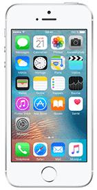 Téléphone Apple iPhone SE 32Go Gris