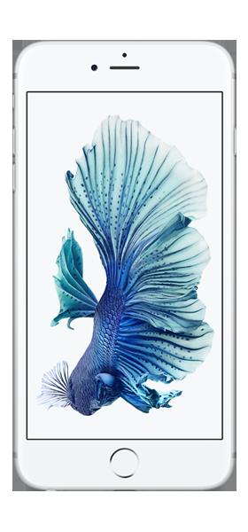 Téléphone Apple iPhone 6S Plus Argent 32Go Comme Neuf