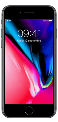 Téléphone Apple iPhone 8 256Go Gris Sidéral Comme Neuf