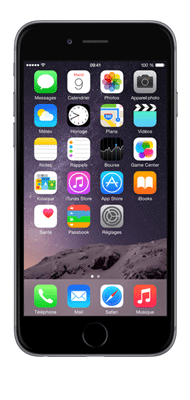 Téléphone Apple iPhone 6S Gris Sideral 32Go Très bon état