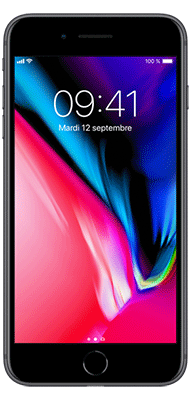 Téléphone Apple iPhone 8 Plus 64Go Gris Sideral Etat correct