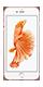 Téléphone Apple iPhone 6S plus Or Rose 32Go Bon état