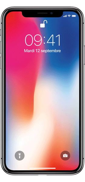 Téléphone Apple iPhone X 64Go Gris Sideral état correct