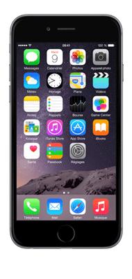 Téléphone Apple iPhone 6S Gris Sideral 32Go état correct