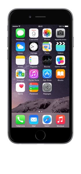 Téléphone Apple Apple iPhone 6S Gris Sideral 32Go Etat correct