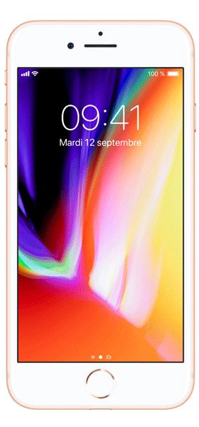 Téléphone Apple iPhone 8 256Go Or Très bon état