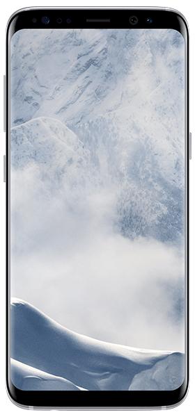 Téléphone Samsung Galaxy S8 Artic Silver Bon état