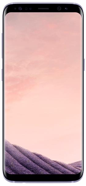 Téléphone Samsung Galaxy S8 Orchid Grey Bon état